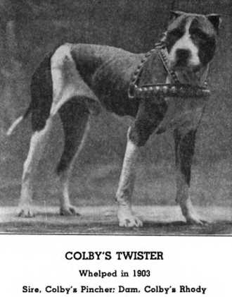 Colby Twister