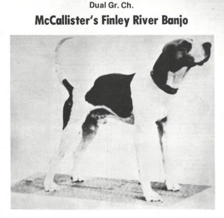 DUAL GRAND CHAMP McCallister's Finley River Banjo