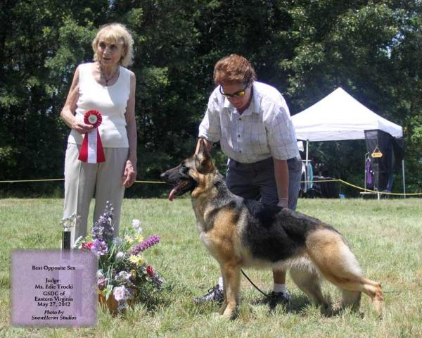 GCH ColbyHaus' Dancin' in the Willows