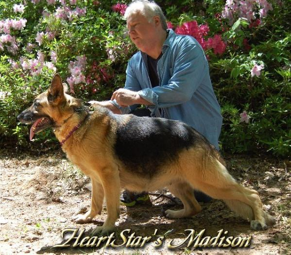 HeartStar's Madison