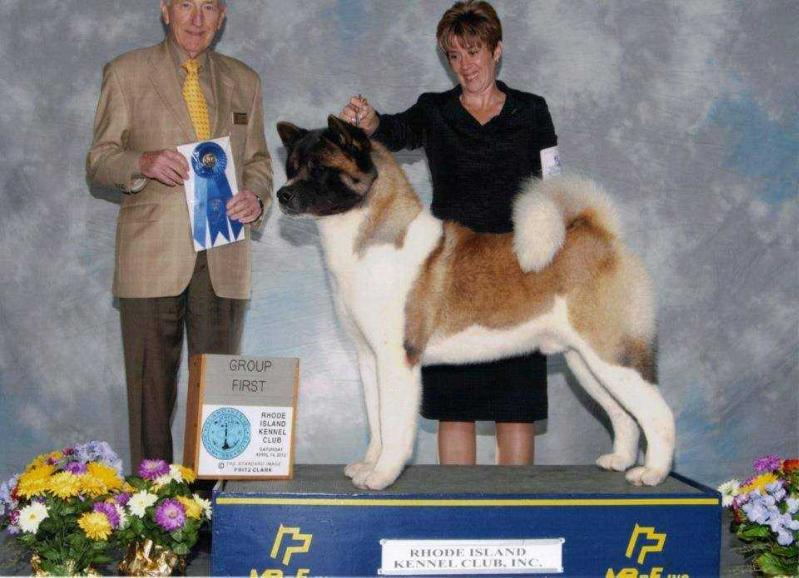 AKC GCH Sondaisa Tough Act To Follow Stardust