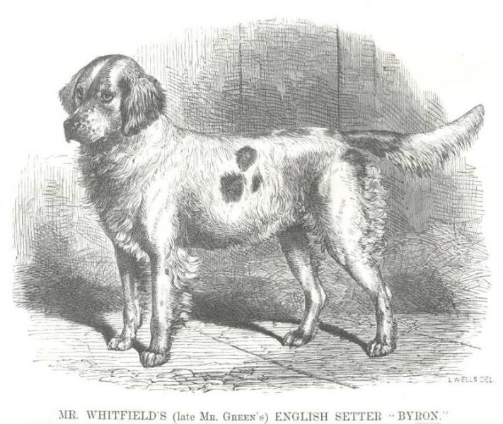 Byron [Mr. Whitfield's / Mr. Green's] (c.1867)