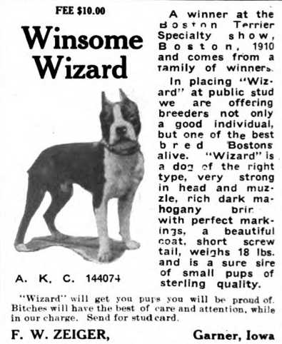 Winsome Wizard 144074