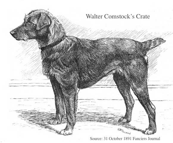 Crate (~1891) (Walter Comstock's)