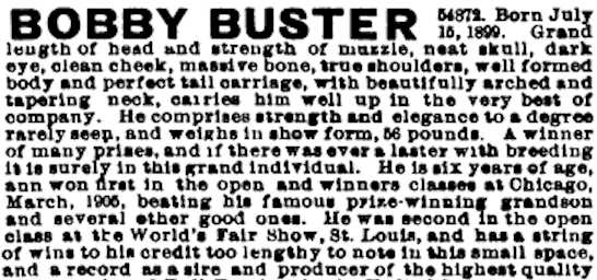 Bobby Buster 054872 vXX