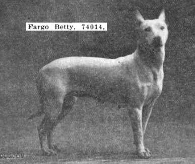 Fargo Betty (074014)