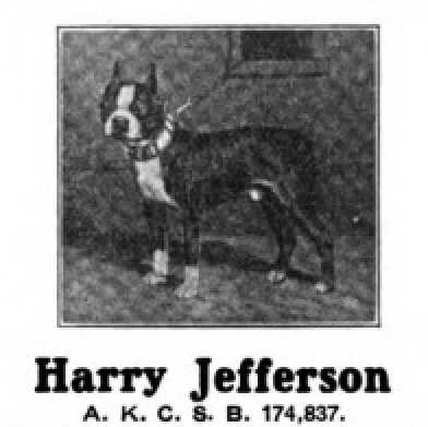 Harry Jefferson 174837