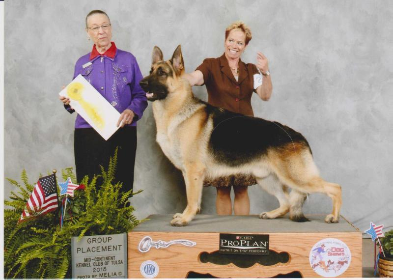 GCH CH Aljan's Save The Last Dance For Me V. Pashen