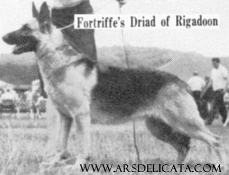 Fortriffe's Driad of Rigadoon
