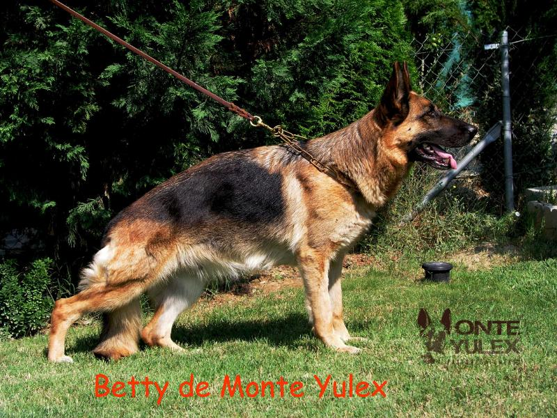V Betty de Monteyulex