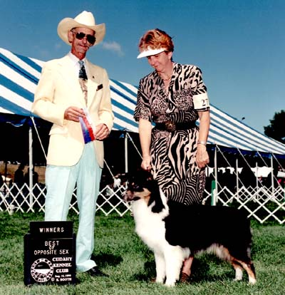 AKC CH Thornapple Hot Country Jam
