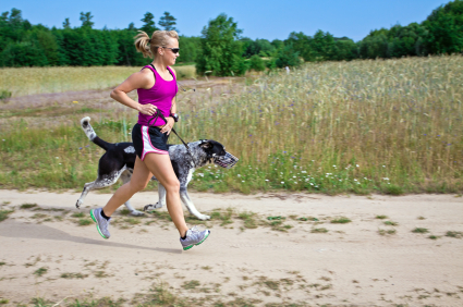 Different Dogs: Different Exercise Needs
